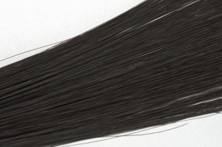 Human Hair Simply Perfect 18-1B